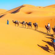 8-daagse rondreis <b>Marokko</b> van Marrakech naar de Sahara incl. vlucht, hotels, vervoer incl. ontbijt en 2 dagen diner!